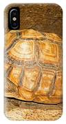 African Spur Thigh Tortoise IPhone Case