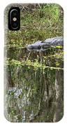 Alligator In Swamp IPhone X Case