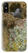 American Dipper In Nest   #1468 IPhone Case