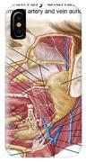 Anatomy Of Human Salivary Glands IPhone Case