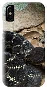 Arizona Black Rattlesnake IPhone Case