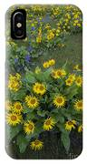 Arrowleaf Balsamroot And Lupine IPhone Case