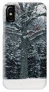 As The Snow Flies IPhone Case