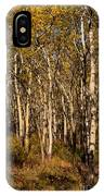 Aspen Forest In Fall IPhone Case