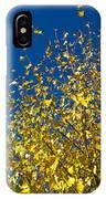 Autumn Blue Sky IPhone Case