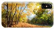 Autumn Fall Landscape In Forest IPhone Case