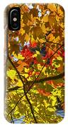 Autumn Maple Leaves IPhone Case