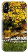 Autumn Pond 2013 IPhone Case