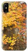 Autumn Steps Near Smalls Falls In Maine IPhone Case