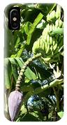 Banana Tree IPhone Case