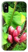 Barriles Banana IPhone Case