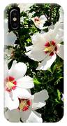 Beautiful Hibiscus IPhone Case