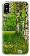 Birches IPhone Case