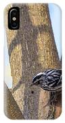 Black And White Warbler IPhone Case