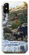 Black Bear Falls IPhone X Case