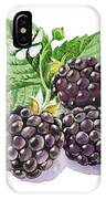 Artz Vitamins Series The Blackberries IPhone Case