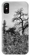 Blue Bonnets-black And White IPhone Case