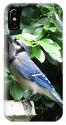 Blue Jay 1 IPhone Case