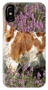 Brittany Spaniel Or Epagneul Breton IPhone Case