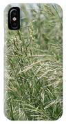 Brome Grass In The Hay Field IPhone Case