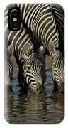 Burchells Zebra Equus Burchellii Herd IPhone Case
