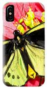 Cairns Birdwing Butterfly IPhone Case