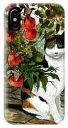 Cat On The Patio IPhone Case