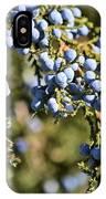 Cedar Blue IPhone Case