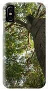 Ceiba Tree IPhone Case