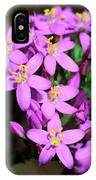 Centaury (centaurium Erythraea Erythraea) IPhone Case