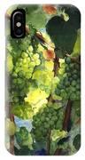Chardonnay Au Soliel IPhone Case