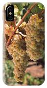 Chardonnay Grapes In Vineyard, Carneros IPhone Case