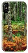Cinnamon Ferns And Red Spruce Trees IPhone Case