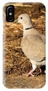 Collared Dove IPhone Case