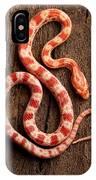 Corn Snake P. Guttatus On Tree Bark IPhone Case