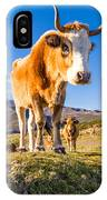 Corsican Cow At Col De San Colombano IPhone Case