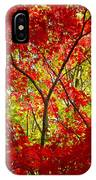 Crimson Window IPhone Case