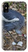 Crowned Crane And Eggs IPhone Case