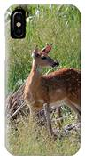 Curious Whitetail IPhone Case