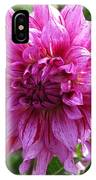 Dahlia Named Annette C IPhone Case