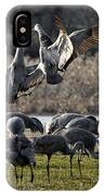 Dance Of The Cranes IPhone Case