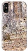 Easter Does IPhone Case