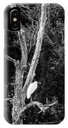 Egret IPhone Case
