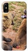 Eurasian Brown Bears Fighting IPhone Case