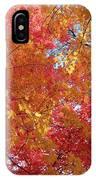 Fall Saint Louis 1 IPhone Case