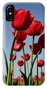 Field Of Red Tulips IPhone Case