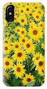 Field Of Sunflowers Helianthus Sp IPhone Case