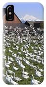 Flocks Of Snow Geese IPhone Case