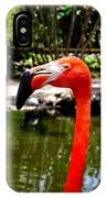 Florida Pink Flamingo IPhone Case