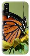 Florida Viceroy IPhone Case